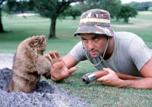 Caddyshack scene with Bill Murray