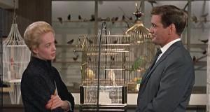 The Birds movie scene
