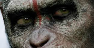 .............................The second entry in the wildly popular simian reboot is coming in December!
