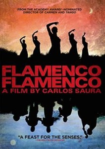 FlamencoDVD