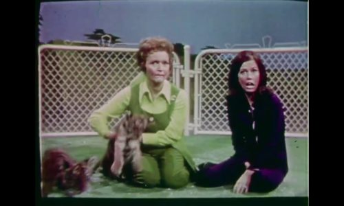 From 1971, the beloved performer celebrities and their pets show arrives this week!
