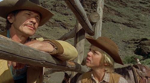 Charles Bronson is a tough horse breeder who lives by his own rules in this 1973 western!
